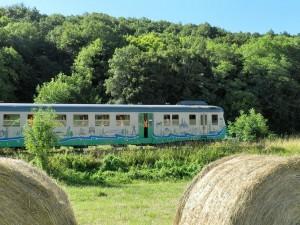 Traion Touristique de la Vallée du Loir, à travers la Vallée et les vignobles, voyage commenté de 3H00 au Pays de Ronsard, Pays de Vendôme