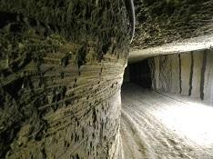 Cave champignonnière Villavard, Vallée du Loir, Pays de Vendôme, troglodytes, culture des champignons, ancienne carrière de tuffeau, champignons de paris, pleurotes, shiitakés