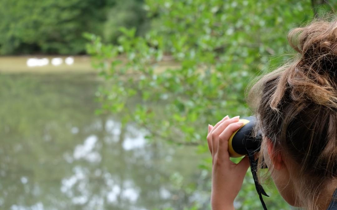 Quand les dinosaures se baignaient dans l'étang de Boisvinet…