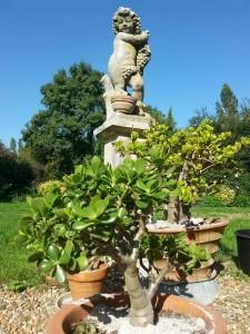 jardin de la Mardelle à Artins, Vallée du Loir, Pays de Vendôme, Pays de Ronsard, dalhias, rosiers, perspectives, sedum, crocus, autour d'un étang, aster