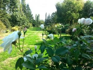 jardin de la Mardelle à Artins, Vallée du Loir, Pays de Vendôme, Pays de Ronsard, dalhias, rosiers, perspectives