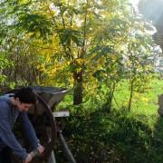 Maison botanique Boursay [OT Pays de Vendôme] (54)