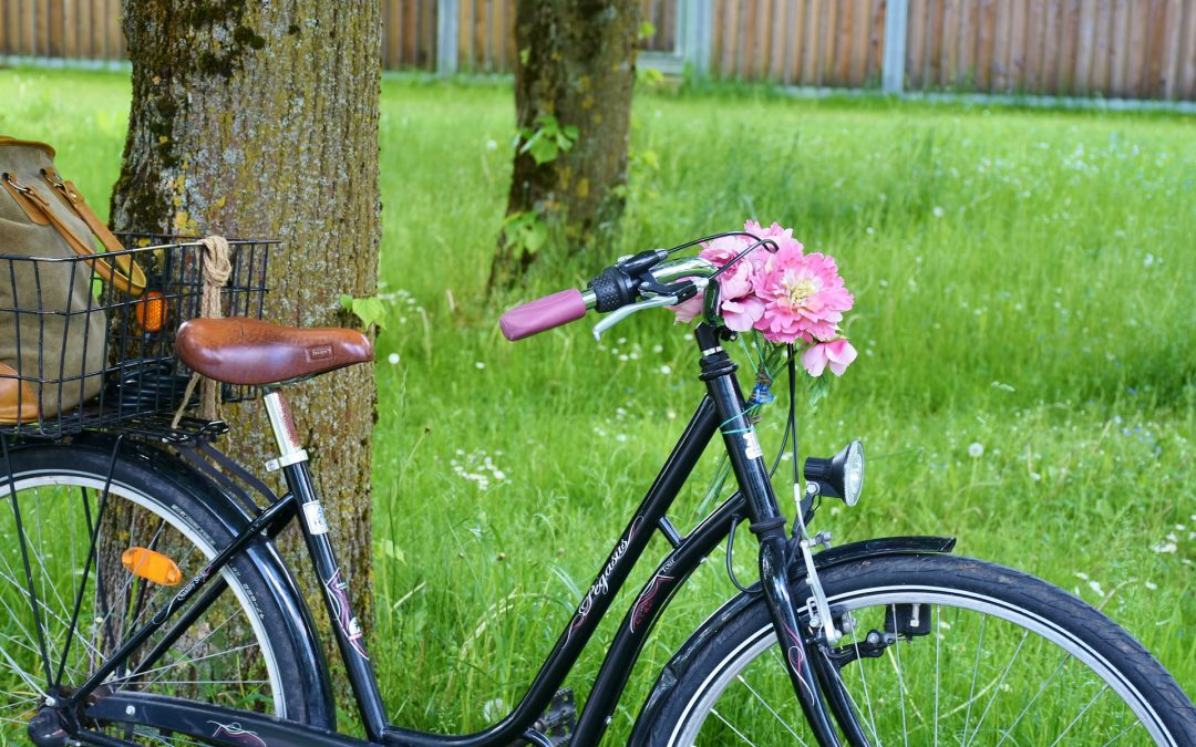 Sur les traces des Templiers, balade à vélo dans le Perche Vendômois…