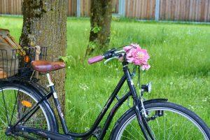 A vélo dans le Perche Vendômois