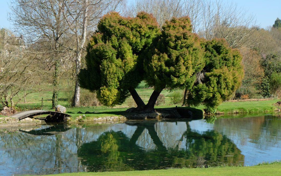 Rendez-vous pour la réouverture du jardin du Plessis Sasnières