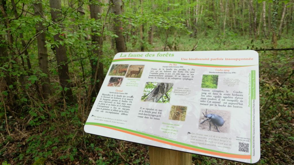 Panneau pédagogique Perche Nature- Circuit du Bois de la Bûlière à Bouffry