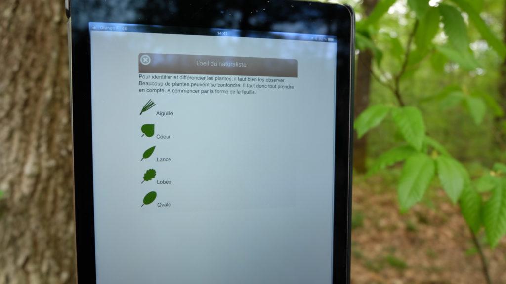 Circuit Ecobalade Bouffry- pour reconnaître les arbres