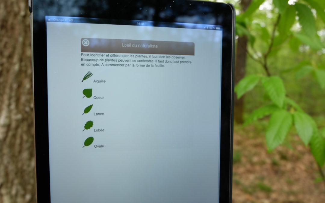 Une Balade botanique dans le Perche Vendômois avec l'application Ecobalade