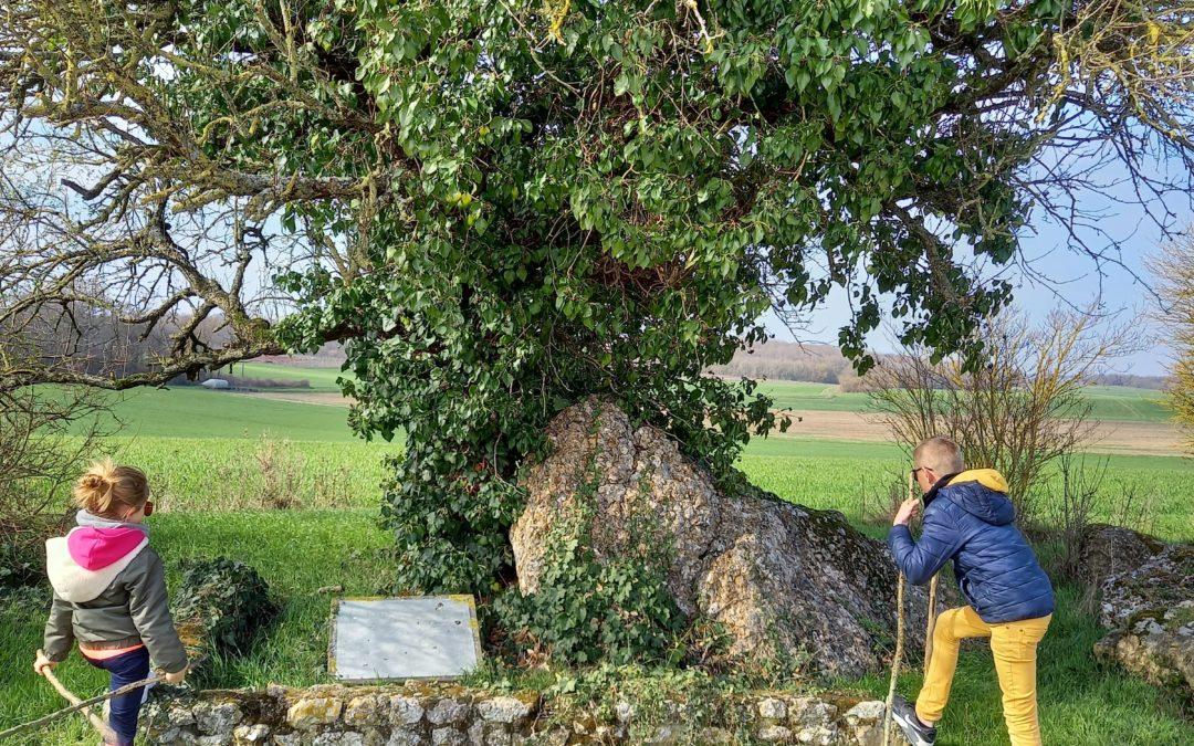 Randonnée «Vignes et Coteaux» en famille à Thoré-la-Rochette